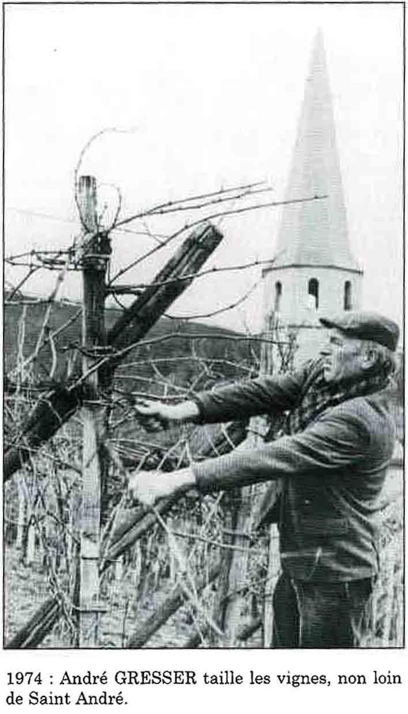 Domaine-gresser-vins-alsace-andlau-grands-crus-André GRESSER